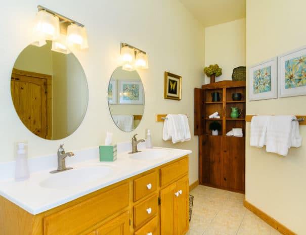 279 Lynn Cove Rd Asheville NC-print-014-11-Master Bath-4200x2800-300dpi